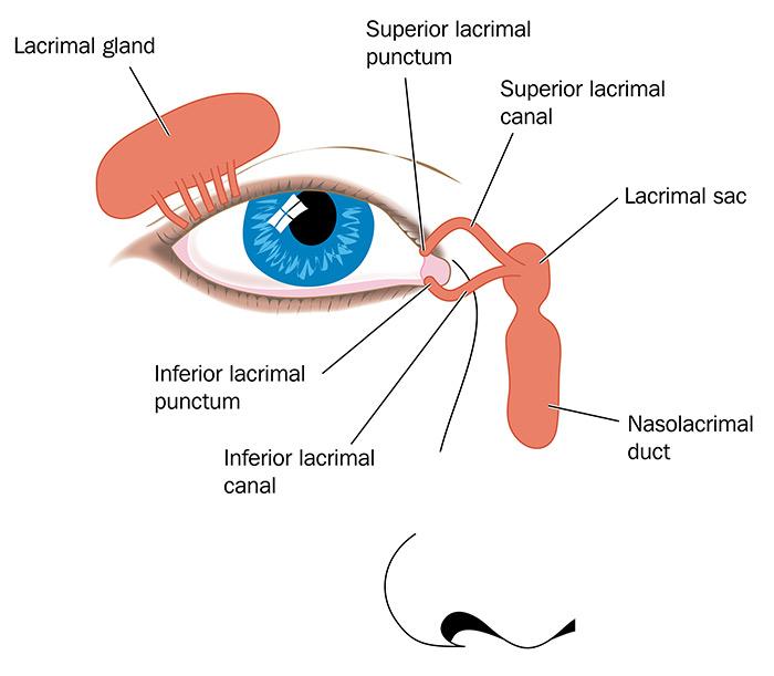 consult-oftalmologic
